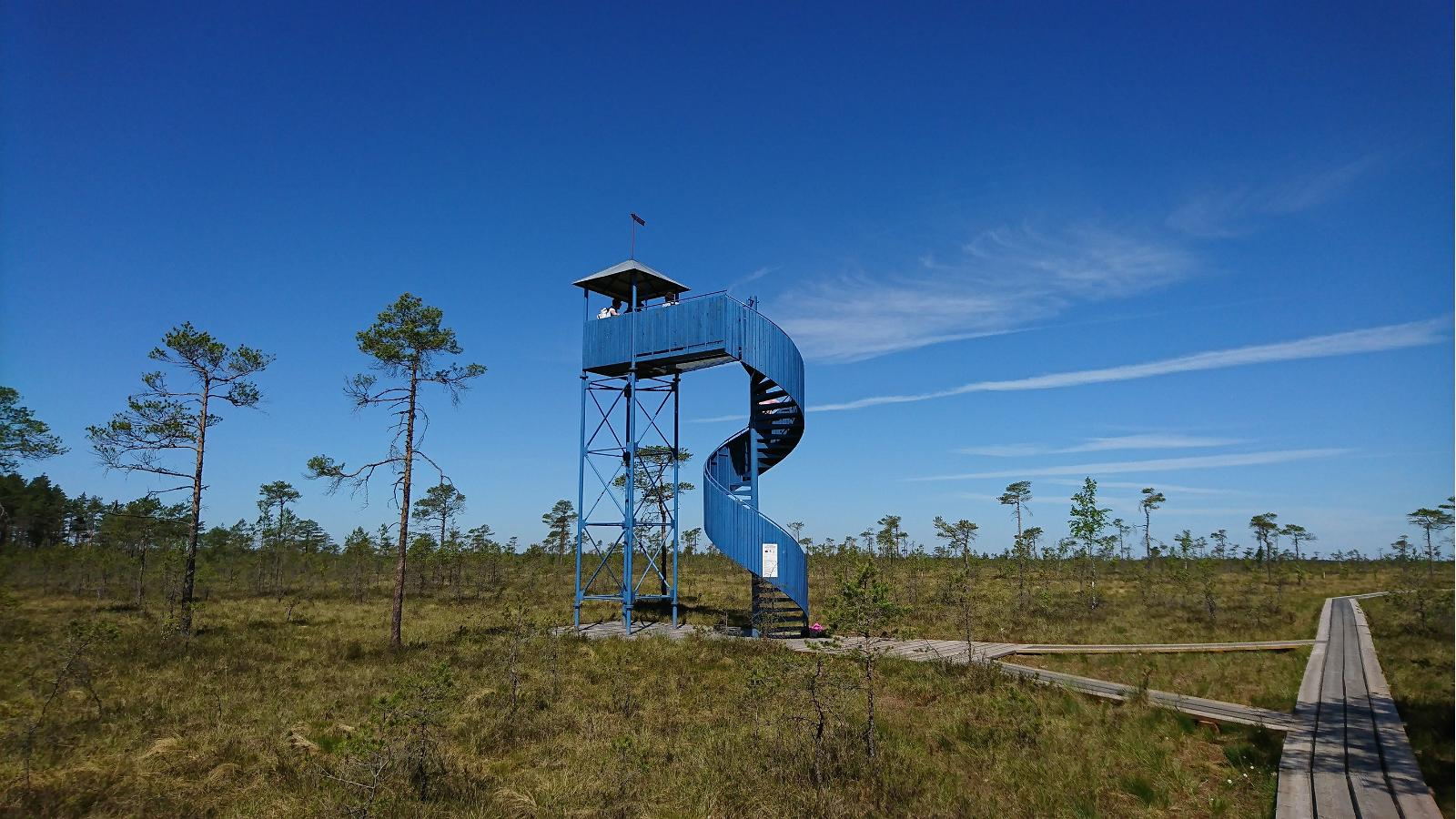 hiking in estonia, soomaa trails