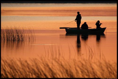 wildlife nature tours in estonia, fishing tours on Estonian lakes